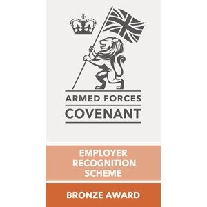 armed forces bronze award
